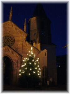 Tanne vor der Kirche_P1040252